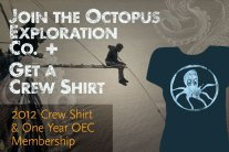 4e52f-2012-shirt-plus-oec