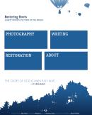 Website design (pro bono)