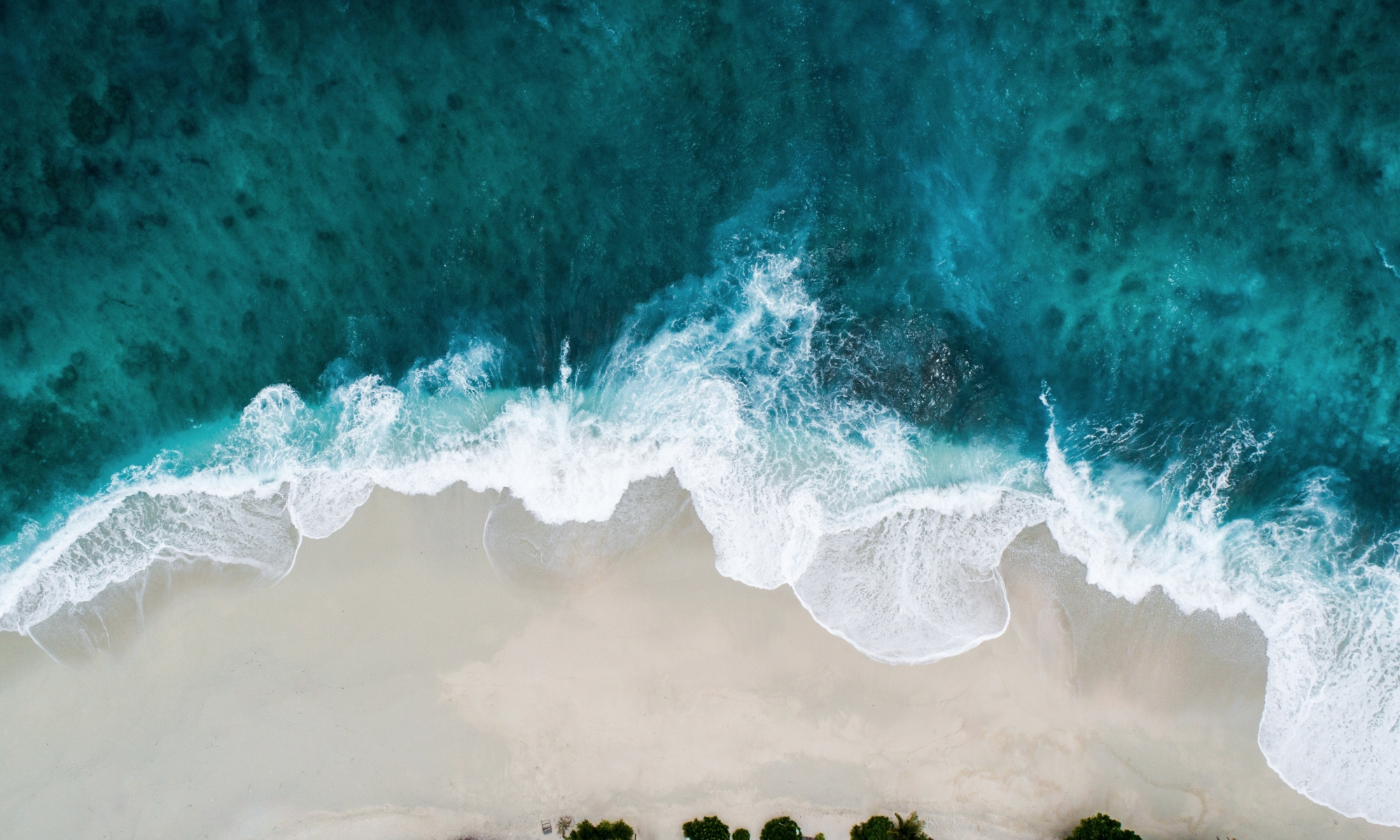 Ocean wave breaking on beach, Shifaaz Shamoon, Unsplash
